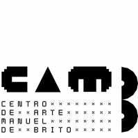 1_camb-3.jpg